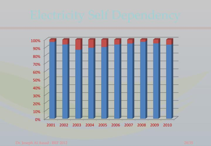 Electricity Self Dependency