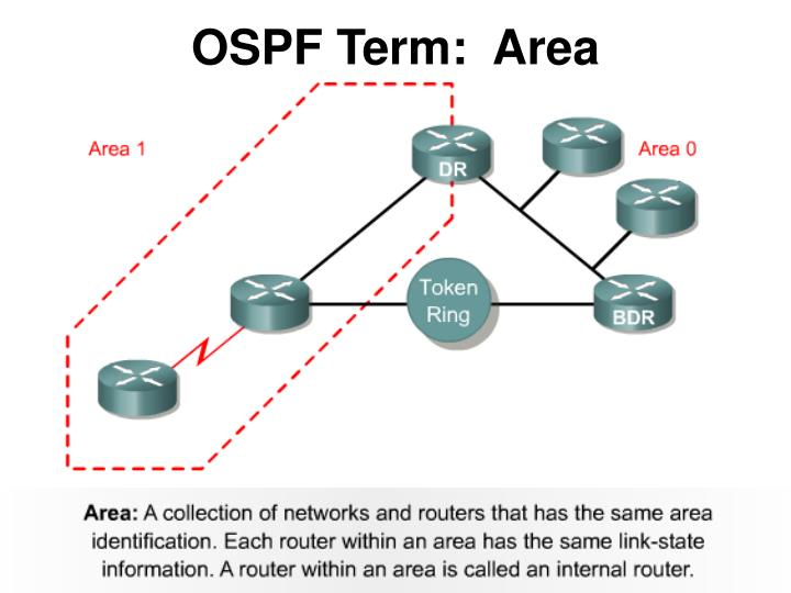 OSPF Term:  Area