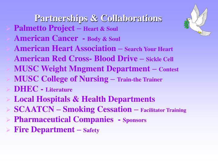 Partnerships & Collaborations