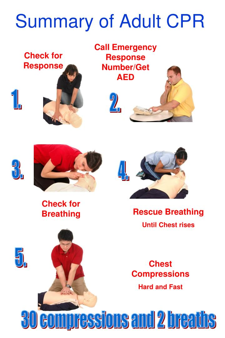 Summary of Adult CPR