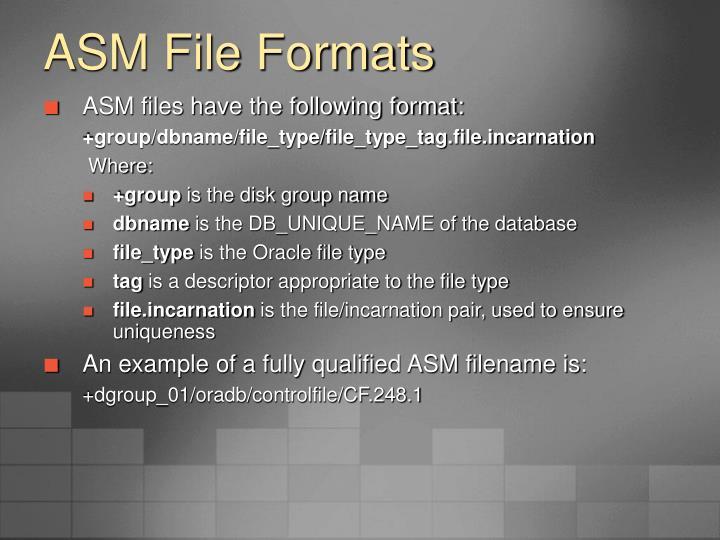 ASM File Formats