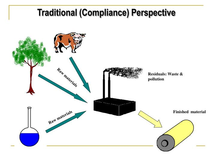 Traditional (Compliance) Perspective