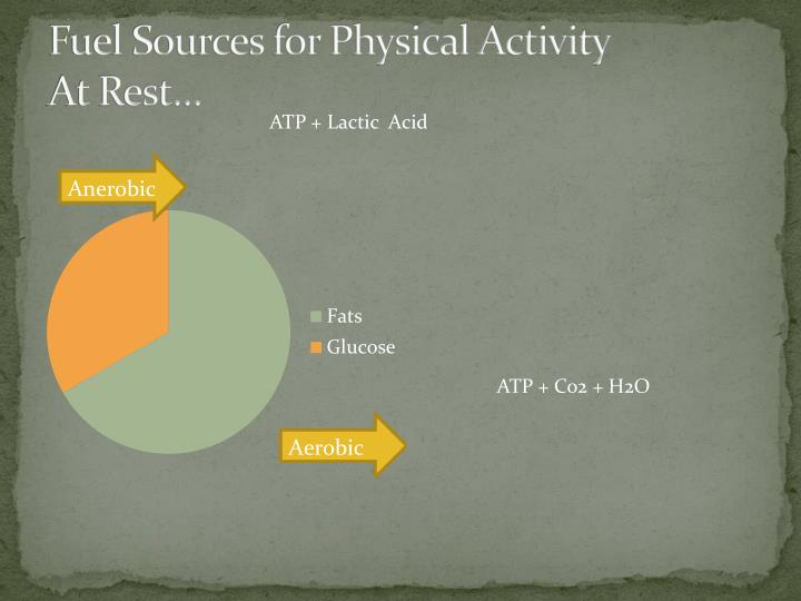 Fuel Sources for Physical Activity