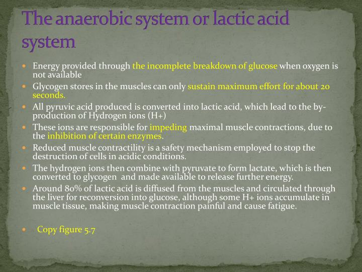 The anaerobic system or lactic acid system