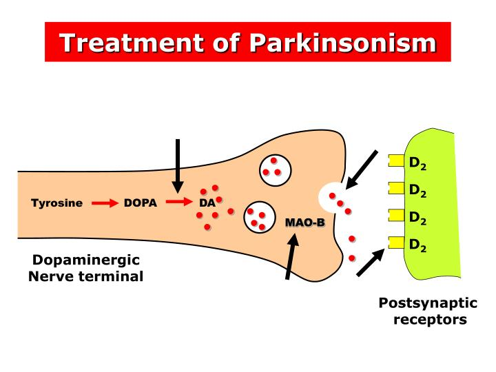 Treatment of Parkinsonism