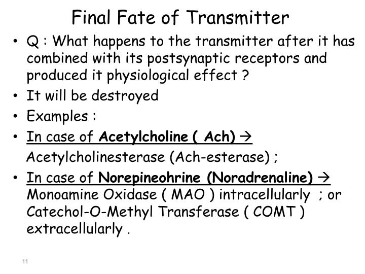 Final Fate of Transmitter