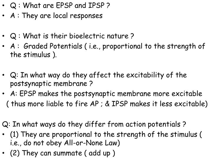 Q : What are EPSP and IPSP ?