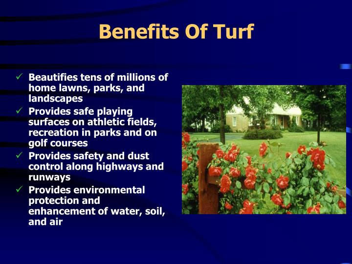 Benefits of turf