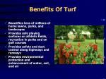 benefits of turf