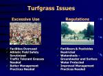 turfgrass issues1