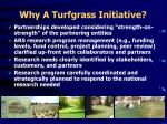 why a turfgrass initiative