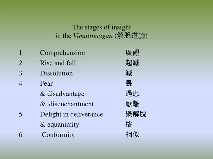 The stages of insight