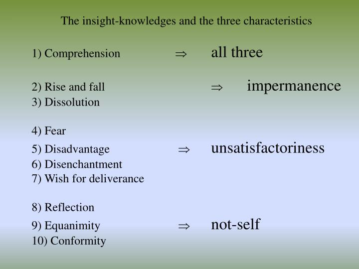 The insight-knowledges and the three characteristics