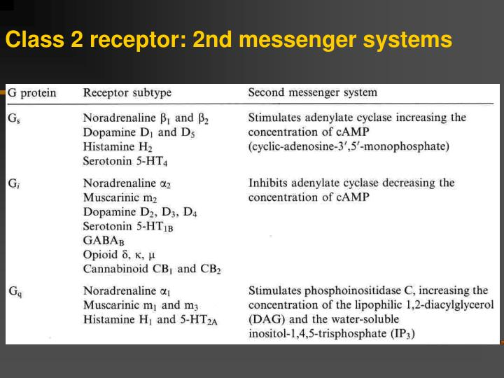 Class 2 receptor: 2nd messenger systems