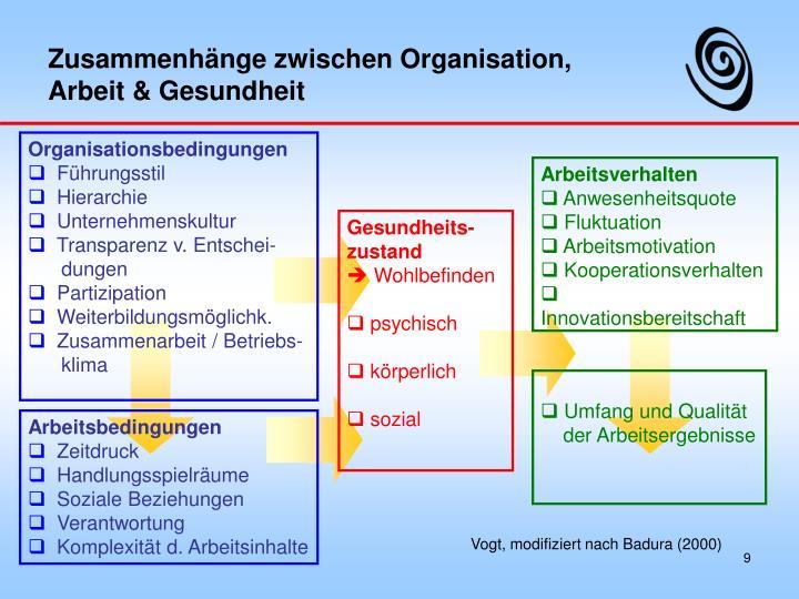 Zusammenhänge zwischen Organisation,