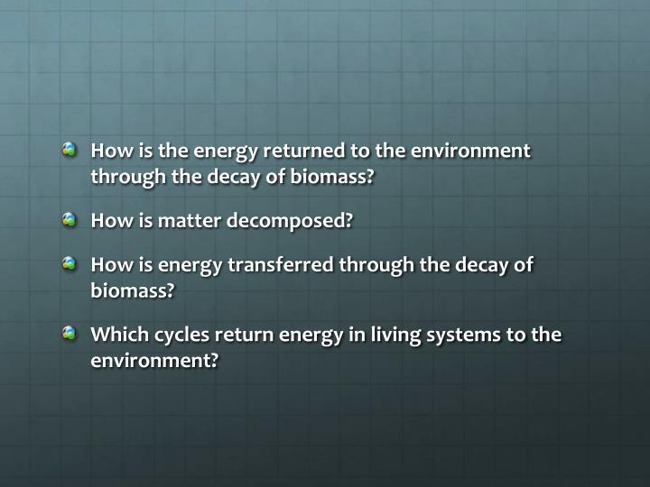 How is the energy returned to the environment through the decay of biomass?