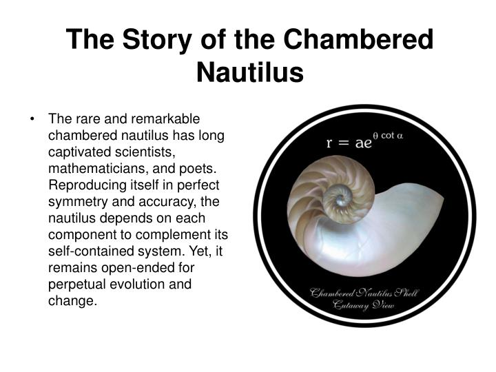 an examination of the poem the chambered nautilus by oliver wendell Research papers on oliver wendell holmes research papers on oliver wendell holmes for literature courses examine his poetry and often the chambered nautilus.