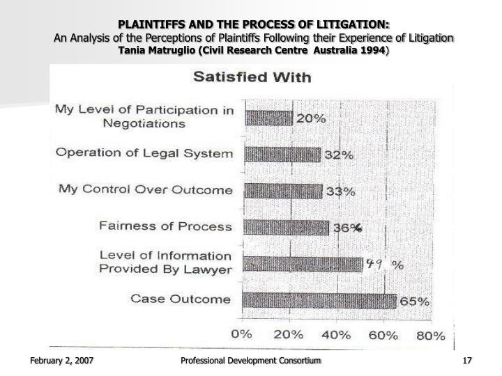 PLAINTIFFS AND THE PROCESS OF LITIGATION: