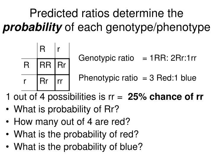 Predicted ratios determine the