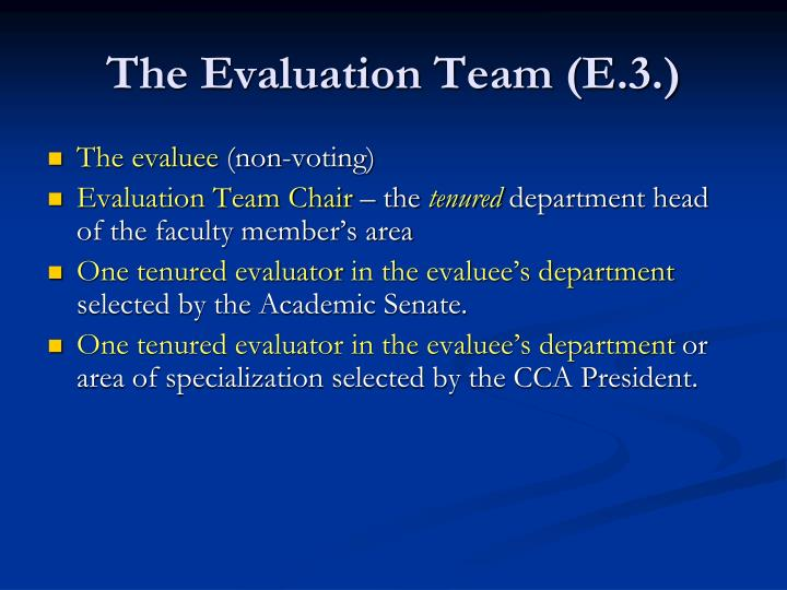 The Evaluation Team (E.3.)