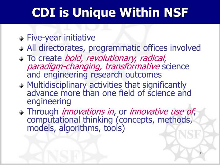 CDI is Unique Within NSF