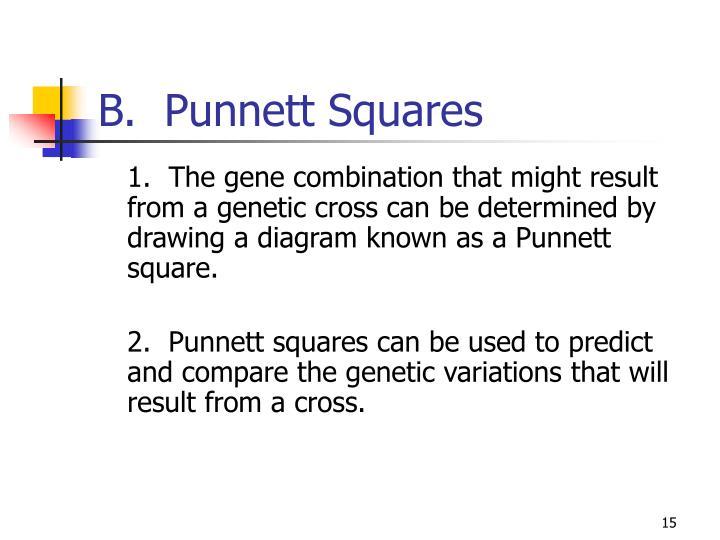 B.  Punnett Squares