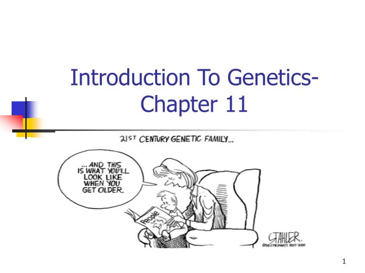 Introduction to genetics chapter 11
