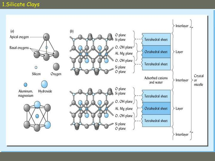 1.Silicate Clays