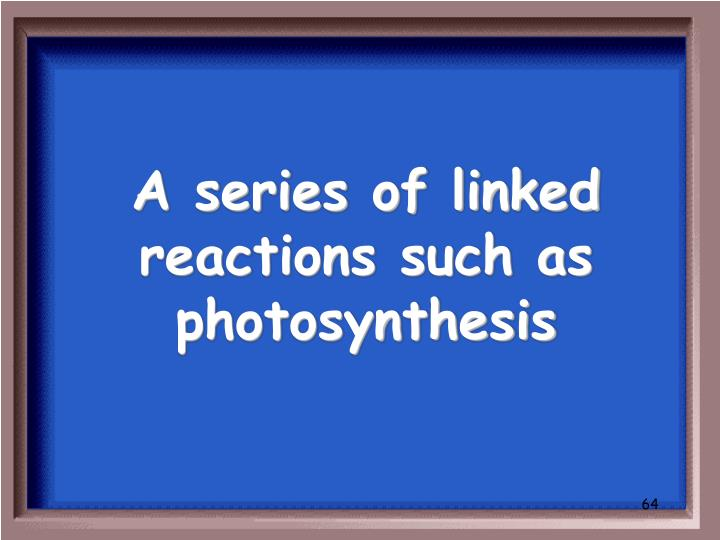 A series of linked reactions such as photosynthesis