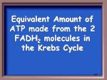 equivalent amount of atp made from the 2 fadh 2 molecules in the krebs cycle