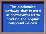 the biochemical pathway that is used in photosynthesis to produce the organic compound glucose