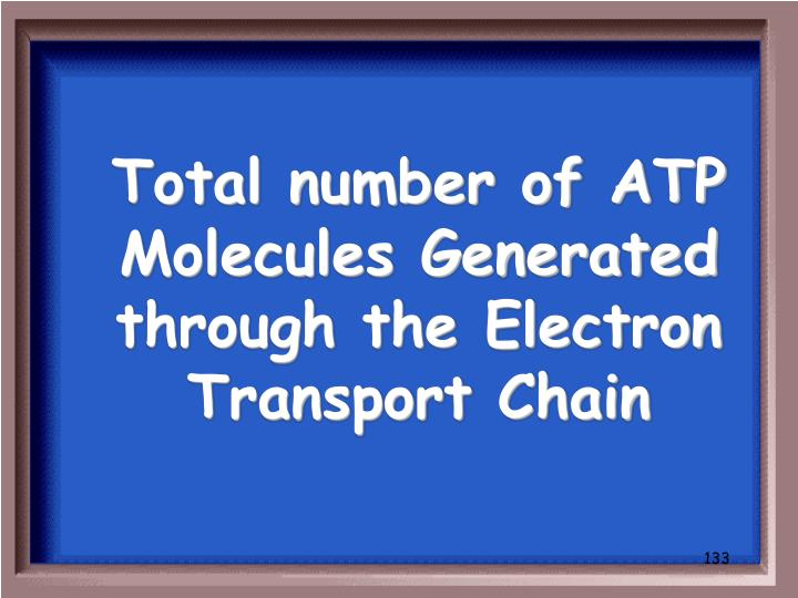 Total number of ATP Molecules Generated through the Electron Transport Chain