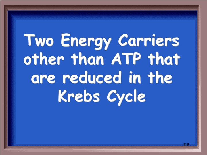 Two Energy Carriers other than ATP that are reduced in the Krebs Cycle