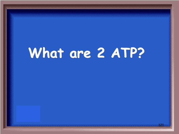 What are 2 ATP?