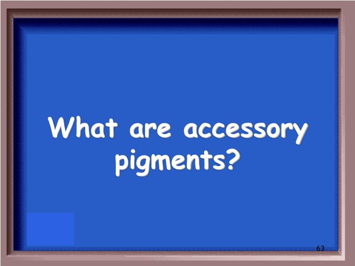 What are accessory pigments?