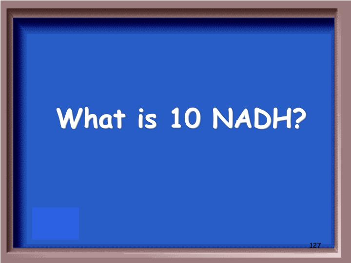 What is 10 NADH?