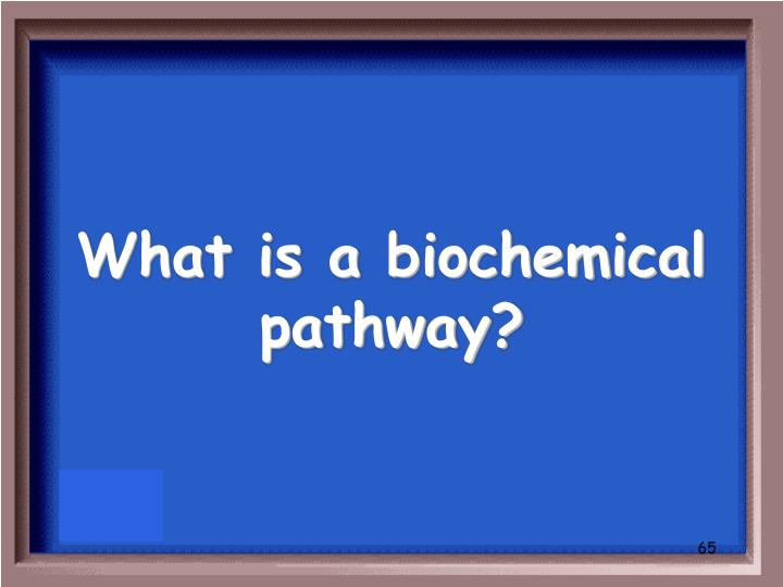 What is a biochemical pathway?