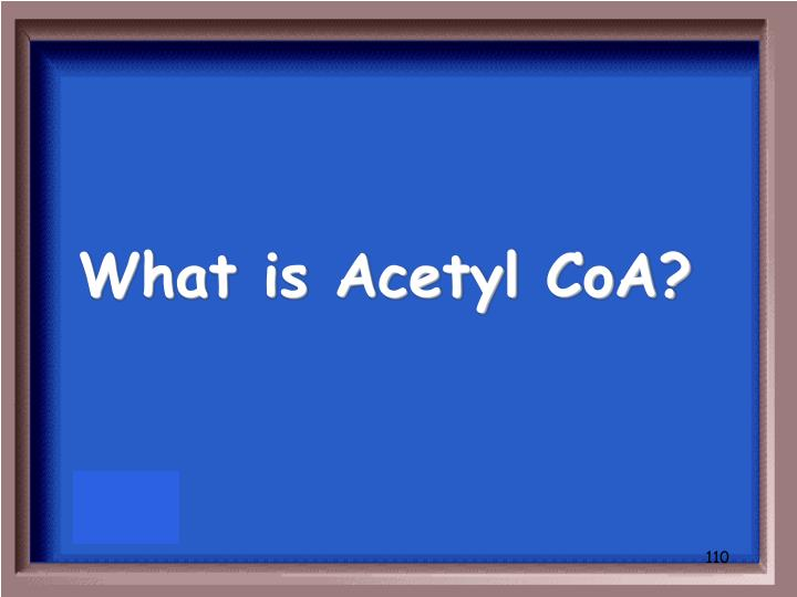 What is Acetyl CoA?
