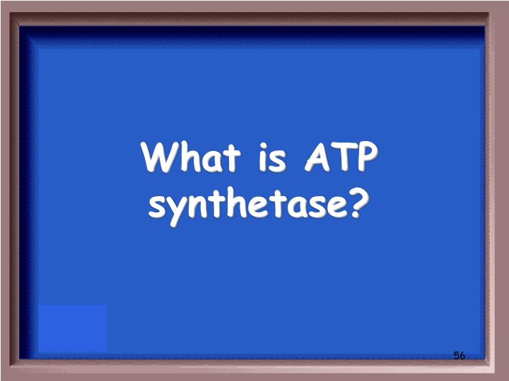 What is ATP synthetase?