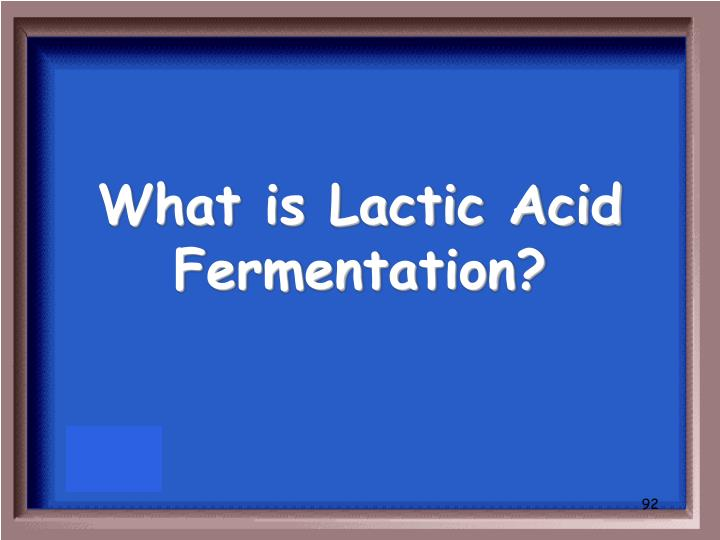 What is Lactic Acid Fermentation?