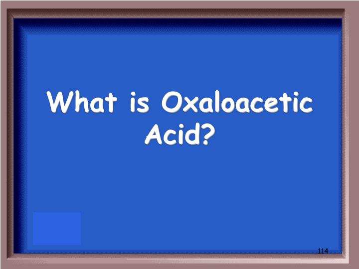 What is Oxaloacetic Acid?