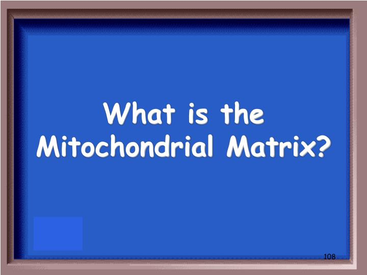 What is the Mitochondrial Matrix?