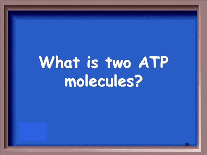 What is two ATP molecules?