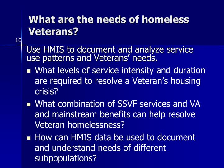 What are the needs of homeless Veterans?