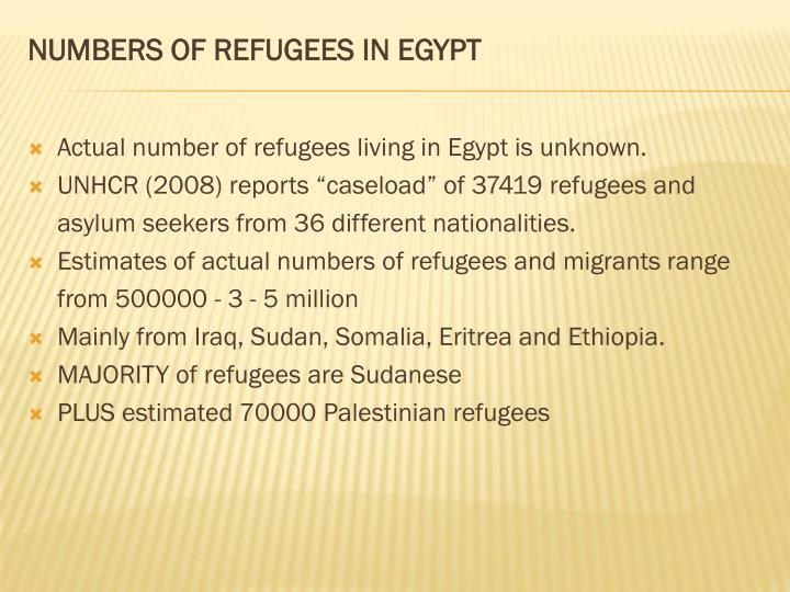 NUMBERS OF REFUGEES IN EGYPT