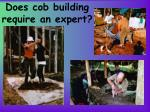 does cob building require an expert