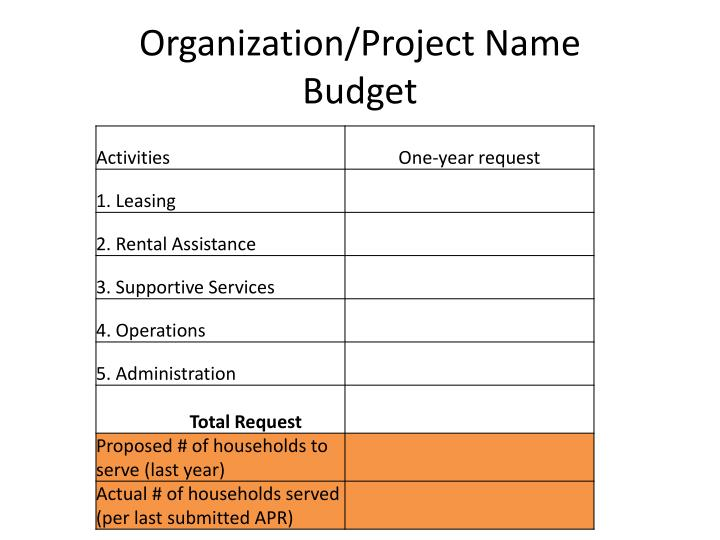 Organization project name budget