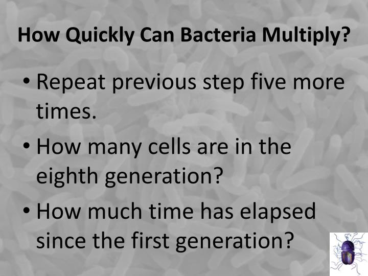 How Quickly Can Bacteria Multiply?