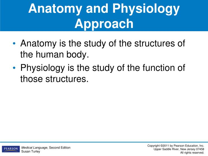 Anatomy and Physiology Approach