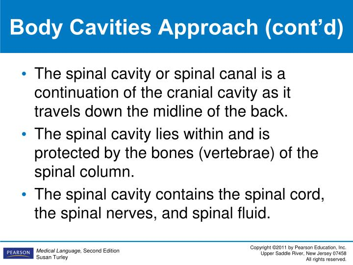 Body Cavities Approach (cont'd)
